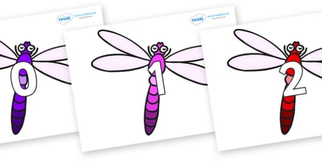 Numbers 0-31 on Dragonflies - 0-31, foundation stage numeracy, Number recognition, Number flashcards, counting, number frieze, Display numbers, number posters