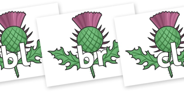 Initial Letter Blends on Thistles - Initial Letters, initial letter, letter blend, letter blends, consonant, consonants, digraph, trigraph, literacy, alphabet, letters, foundation stage literacy