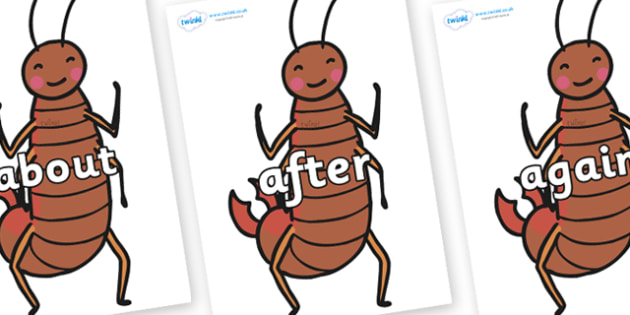 KS1 Keywords on Earwigs - KS1, CLL, Communication language and literacy, Display, Key words, high frequency words, foundation stage literacy, DfES Letters and Sounds, Letters and Sounds, spelling