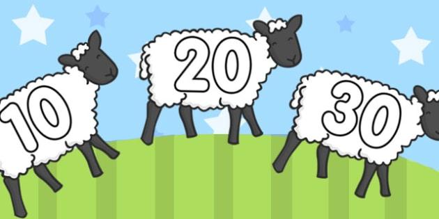 Numbers 10-100 on Sheep - numbers, display numbers, sheep, 10-100