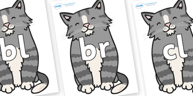 Initial Letter Blends on Kittens - Initial Letters, initial letter, letter blend, letter blends, consonant, consonants, digraph, trigraph, literacy, alphabet, letters, foundation stage literacy