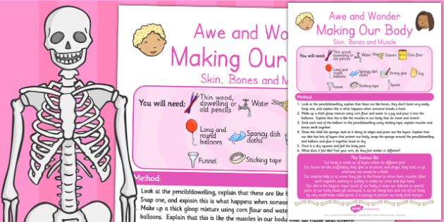 Making Our Body Skin Bones Muscle Awe and Wonder Science Activity