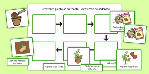 Cresterea plantelor, Fisa - ordoneaza etapele, plante, primavara