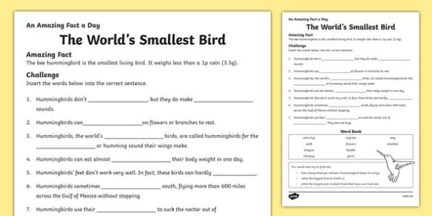 The World's Smallest Bird Activity Sheet, worksheet