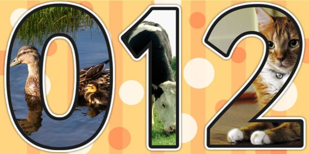 On the Farm Themed A4 Photo Display Numbers - farm, numbers