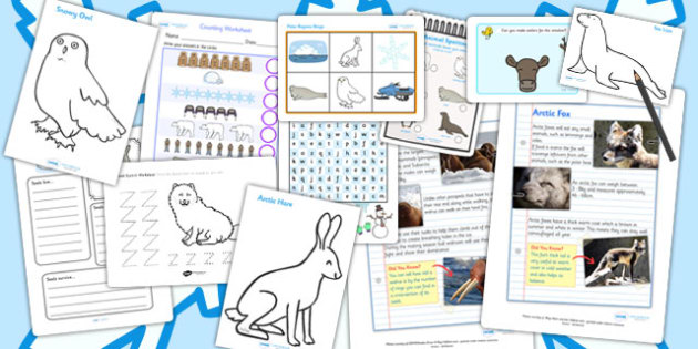 Polar Regions Activity Pack - geography, activities, games, game