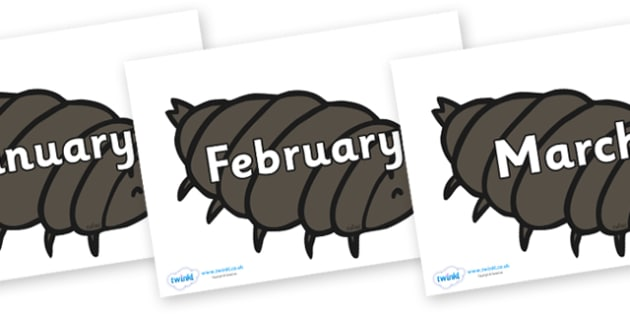 Months of the Year on Woodlice - Months of the Year, Months poster, Months display, display, poster, frieze, Months, month, January, February, March, April, May, June, July, August, September