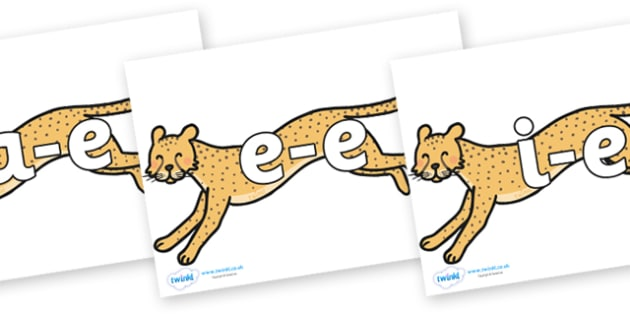 Modifying E Letters on Cheetahs - Modifying E, letters, modify, Phase 5, Phase five, alternative spellings for phonemes, DfES letters and Sounds