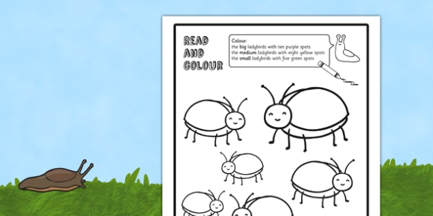 Ladybird Read and Colour Worksheet - insects, animals, worksheets