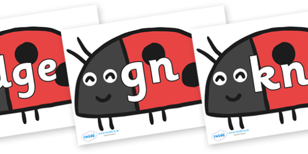 Silent Letters on Ladybird to Support Teaching on What the Ladybird Heard - Silent Letters, silent letter, letter blend, consonant, consonants, digraph, trigraph, A-Z letters, literacy, alphabet, letters, alternative sounds