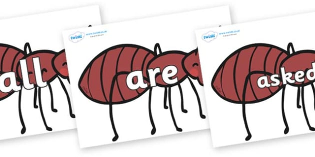 Tricky Words on Ants - Tricky words, DfES Letters and Sounds, Letters and sounds, display, words