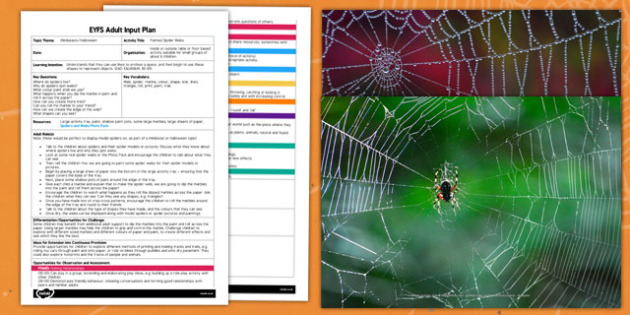 Painted Spider Webs EYFS Adult Input Plan and Resource Pack
