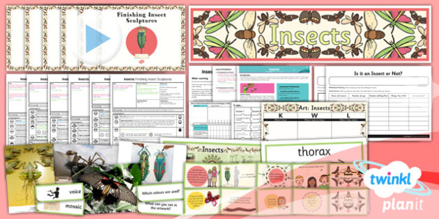 PlanIt - Art LKS2 - Insects Unit Pack