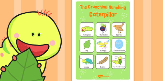 Vocabulary Poster to Support Teaching on The Crunching Munching Caterpillar - vocab