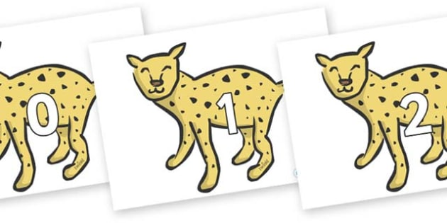 Numbers 0-50 on Cheetahs - 0-50, foundation stage numeracy, Number recognition, Number flashcards, counting, number frieze, Display numbers, number posters