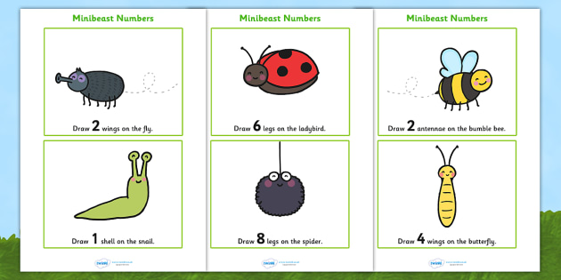 Minibeasts Drawing Number Worksheets - minibeasts, minibeast number worksheet, minibeast counting, counting worksheet, number worksheet, drawing, numeracy