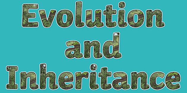 Evolution and Inheritance Display Lettering - Science lettering, Science display, Science display lettering, evolution, inheritance