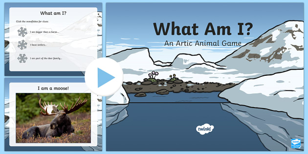 Arctic Animals What Am I Interactive PowerPoint Game - arctic animals, interacive powerpoint, interactive, powerpoint, interactive games, arctic powerpoint