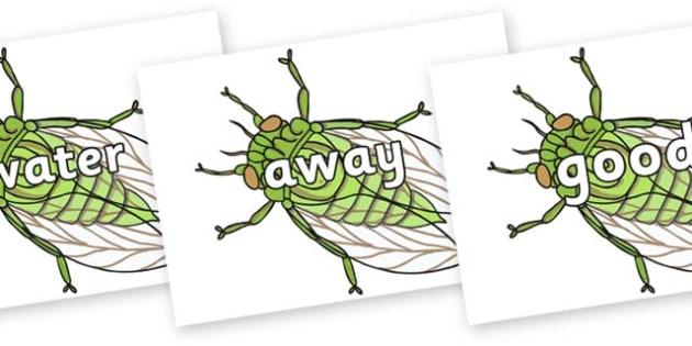 Next 200 Common Words on Cicada - Next 200 Common Words on  - DfES Letters and Sounds, Letters and Sounds, Letters and sounds words, Common words, 200 common words