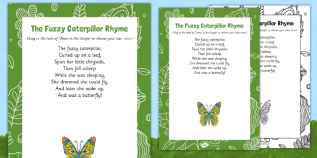 The Fuzzy Caterpillar Display Pack - EYFS, butterfly, egg, life cycle, cocoon, caterpillar