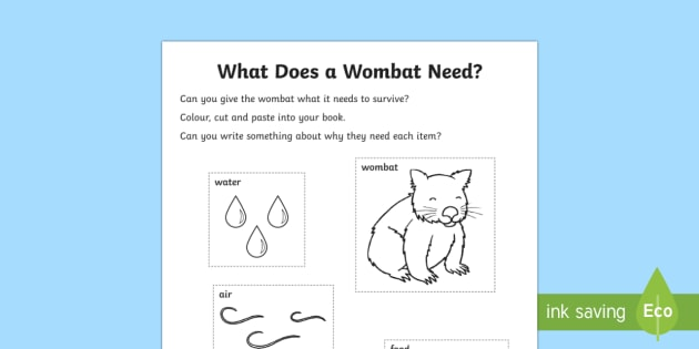 What Does A Wombat Need? Activity Sheet