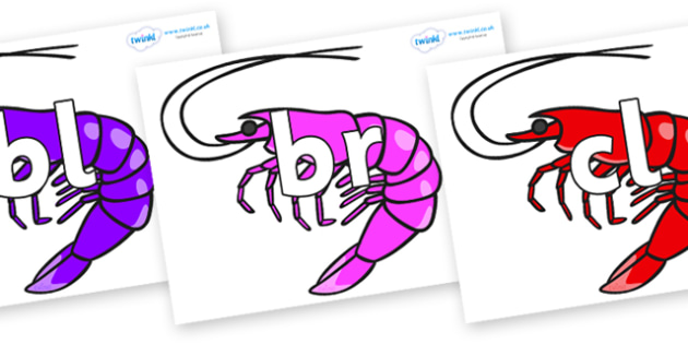 Initial Letter Blends on Shrimps - Initial Letters, initial letter, letter blend, letter blends, consonant, consonants, digraph, trigraph, literacy, alphabet, letters, foundation stage literacy