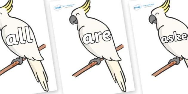 Tricky Words on Cockatoos - Tricky words, DfES Letters and Sounds, Letters and sounds, display, words