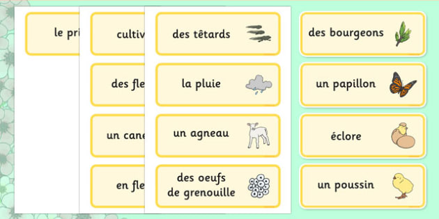 Spring Word Cards French - francais, seasons