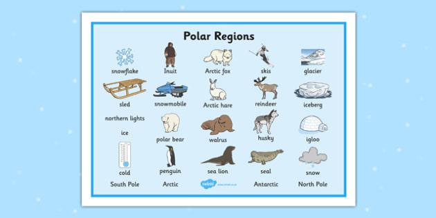 Polar Regions Word Mat - Polar Regions Word Mat, Polar Regions, polar region, region, polar, word mat, mat, writing aid, ice, North Pole, South Pole, Arctic, Antarctic, polar bear, penguin, glacier, iceberg, seal, husky, northern lights, igloo, Inuit