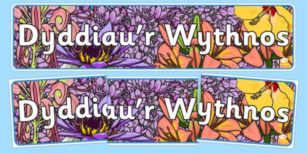 Dyddiau'r Wythnos Display Banner Flower Background Cymraeg - cymraeg, days of the week, display banner, flower, background