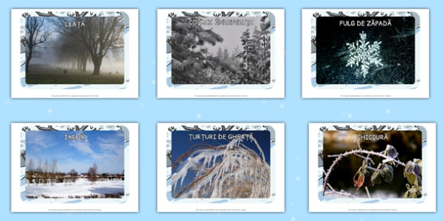 Fotografii de iarna - fenomene ale naturii, animale, imbracaminte