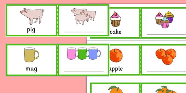 Fill in The Regular Plural Cards - SLI, irregular plurals, grammar, EAL, language disorder, Language delay