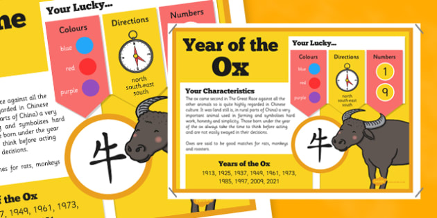 Chinese New Year of the Ox Display Poster - chinese new year, display poster, information, year of the ox