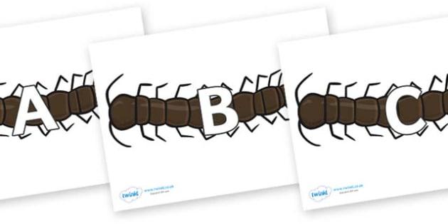 A-Z Alphabet on Centipedes - A-Z, A4, display, Alphabet frieze, Display letters, Letter posters, A-Z letters, Alphabet flashcards