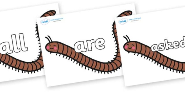 Tricky Words on Millipedes - Tricky words, DfES Letters and Sounds, Letters and sounds, display, words