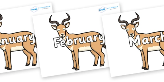 Months of the Year on Antelopes - Months of the Year, Months poster, Months display, display, poster, frieze, Months, month, January, February, March, April, May, June, July, August, September