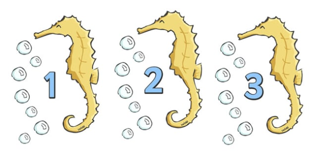 Numbers 0-20 on Seahorses - Fish, Under the sea, Foundation Numeracy, Number recognition, Number flashcards, counting, sea, seaside, display, posters, water, tide, fish, sea creatures, shark, whale, marine, dolphin, starfish, waves, sand