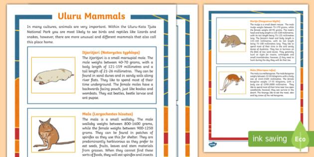 Uluru Mammals Fact File