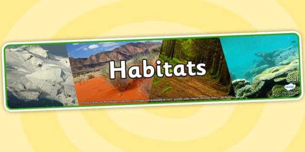 Habitats Photo Display Banner - habitats, photo display banner, display banner, display, banner, photo banner, header, display header, photo header, photo