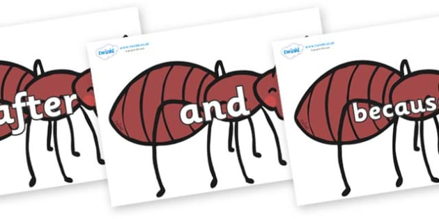 Connectives on Ants - Connectives, VCOP, connective resources, connectives display words, connective displays
