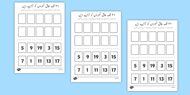 Number Ordering Odd Numbers to 20 Activity Urdu - urdu, Number, Order, sequence, size, big, small, large