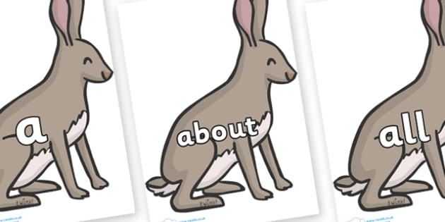 100 High Frequency Words on Hares - High frequency words, hfw, DfES Letters and Sounds, Letters and Sounds, display words