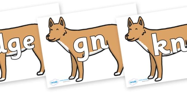 Silent Letters on Dingo - Silent Letters, silent letter, letter blend, consonant, consonants, digraph, trigraph, A-Z letters, literacy, alphabet, letters, alternative sounds