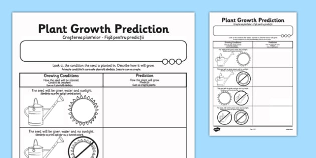 Plant Growth Prediction Worksheet Romanian Translation - romanian, plants, living things, plant growth worksheet, plant growth prediction worksheet, predicting why plants grow, science
