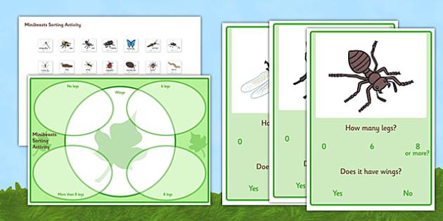 Minibeast Sorting Activity - minibeasts, minibeast sorting activity, minibeast legs sorting activity, how many legs sorting activity, how many legs