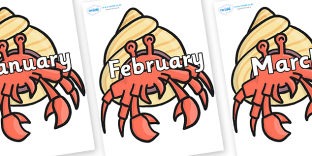 Months of the Year on Hermit Crabs - Months of the Year, Months poster, Months display, display, poster, frieze, Months, month, January, February, March, April, May, June, July, August, September