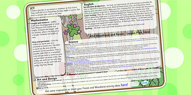 Forest and Woodland Lesson Plan Ideas KS2 - lesson plan, KS2