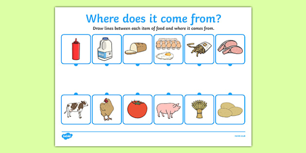 Where Does Food Come From Worksheet - food,work sheet, where does food ...