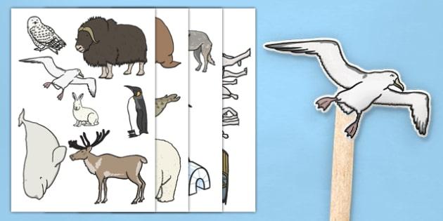 Polar Regions Stick Puppets - EYFS, Early Years, North Pole, South Pole, polar, Arctic, Antarctic