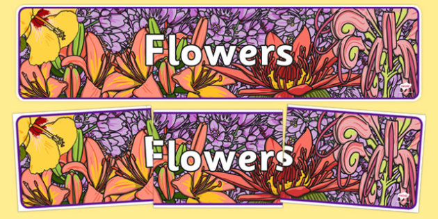 Flowers IPC Display Banner - plants, flower, header, display